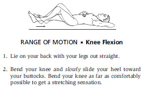 Range Of Motion - Knee Flexion